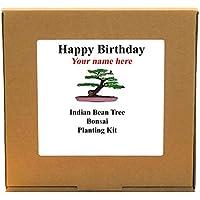 Personalised Happy Birthday Indian Bean Bonsai Tree Kit - Gardening Gift For Him, Her, Mum, Dad, Men, Women or Children