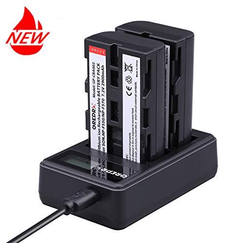 NP-F550/np-f570 Camcorder Akkus(2900mAh,2-Stück Ersatzakku mit USB-Dual Ladegerät für Sony NP F960,F970, F330,F770,F530,F570 CCD-RV100 CCD-RV200 SC5 SC9 TR1 TR940