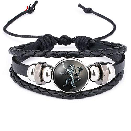 Styliee Armband Armreif, Schmuck Geschenk, New Ethnic Brown Retro Leather Bracelets for Men Women Game of Thrones Multiple Layers Badge Charms Men Bangles Fashion 12012601 Adjustable