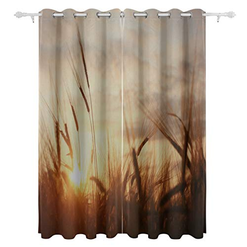 AGIRL Land-Bauernhof-Sonnenuntergang-Szenen-dekorativer hängender 2 Panel-Satz druckte Blackout-Vorhänge für Schlafzimmer-Wohnzimmer-Esszimmer-Fenster drapiert 54x84 Zoll-Vorhang