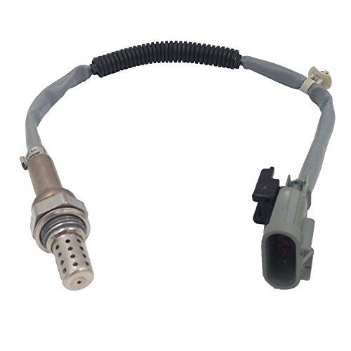 Preisvergleich Produktbild O2Sauerstoff Sensor passt 39210Obstkorb mit Aufhängevorrichtung–3C920234–4464