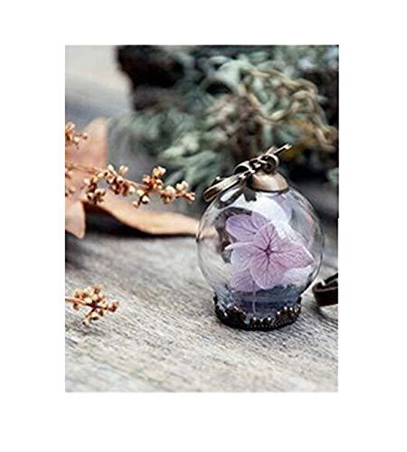 Blasen Globe Anhänger (Botanical Schmuck, Hortensie Halskette, echte Anhänger Blume, natur, Glas Kugel Schmuck)