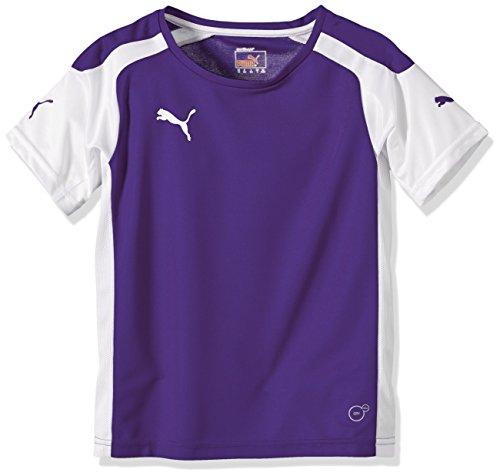 Puma Unisex - Kinder Trikot Fußball Speed, team violet-weiß, 176, 701906 10