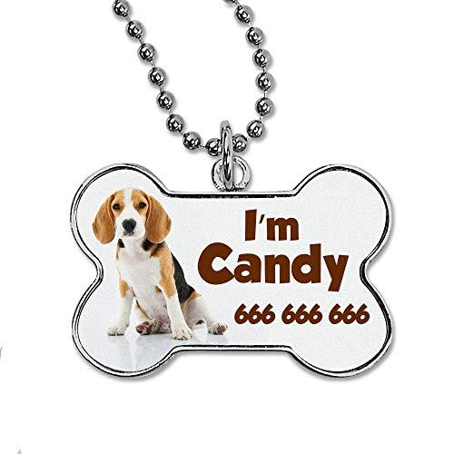 Chapa Personalizada Hueso para Perro, Gato o Mascota con su Nombre o Foto. Varios diseños Disponibles. ¡Diseñalo tu Mismo!