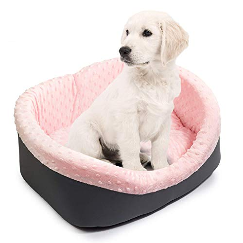 BoutiqueZOO Hundebett Hundesofa Hundekissen für kleine/mittlere/große Hunde (Chihuahua Hundebett)