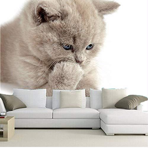 e Muralcute Little KittyWohnzimmer Tv WandSchlafzimmer Tapete-350X250Cm ()