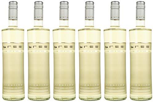 Bree Riesling Qualitätswein Weißwein feinherb (6 x 0.75 l) - Besonderes Flaschendesign, Aromen von Pfirsich und Quitte, feiner Mineralik, aus Deutschland