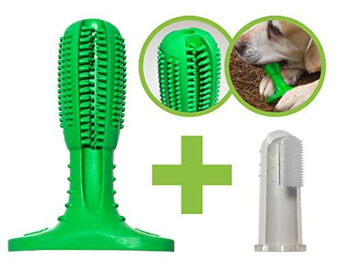 More4Pets Hundezahnbürste, Kauspielzeug für den Hund zur optimalen Reinigung der Zähne, für große und kleine Hunde, im Set inklusive Fingerzahnbürste