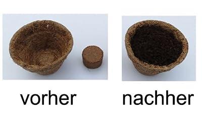 Kokosquelltabletten Ø 22 mm, 1008 Stück (Preis je Stück: 5 Cent), Kokosquelltöpfe, Kokosquellerde, torffreie Anzuchterde aus gepressten Kokosfasern, ergibt ca. 25-30 ml je Tablette von pemmiproducts bei Du und dein Garten