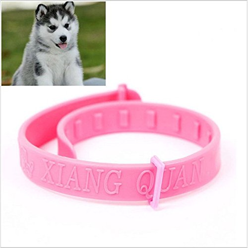 Pinkdose-M-Pet-Collar-Neck-Ring-Leave-Away-from-Flea-Tick-Mite-Louse-Remedy-Pet-Products-Supplies-Accessories