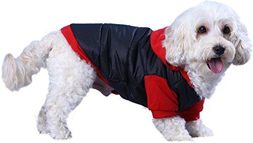 Doggy Dolly W110 Hundejacke Wasserabweisend mit Kapuze, schwarz/rot, Wintermantel / Winterjacke, Größe : XXL - 2