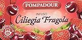 Pompadour Ciliegia Fragola Mix alla Frutta per Infuso - Confezione da 3 X 20 Filtri.