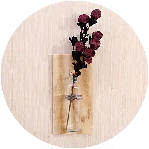 Hydroponische Glasvase im Mauer Ohne Bohren, Reagenzgläser für Blumen, Hängevase Reagenzglas mit Holzschild, Vintage Pflanze Vase (Khaki) ()