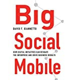 [ Big Social Mobile: How Digital Initiatives Can Reshape the Enterprise and Drive Business Results Giannetto, David F. F. ( Author ) ] { Hardcover } 2014