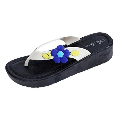 Hausschuhe Sandalen , Kaiki Frauen Sommerblumen Cool Trailers Soft Pantoffeln Beach Flip Flops Schuhe Blue