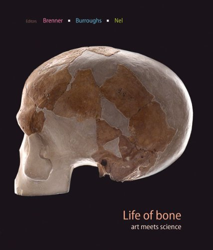 Life of Bone: The Taung Fossil and Thre South African Artists (2012-01-30)