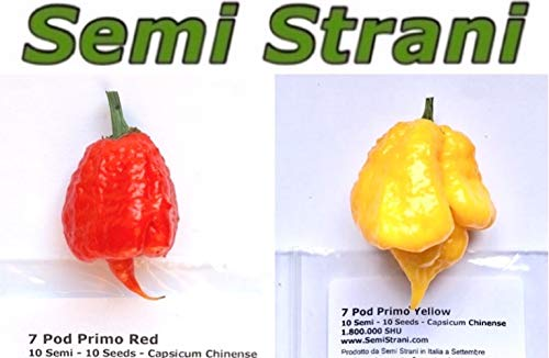 7 POD PRIMO RED et 7 POD PRIMO YELLOW, 20 Pure Graines de Chili Piments Les Plus Piquant du Monde