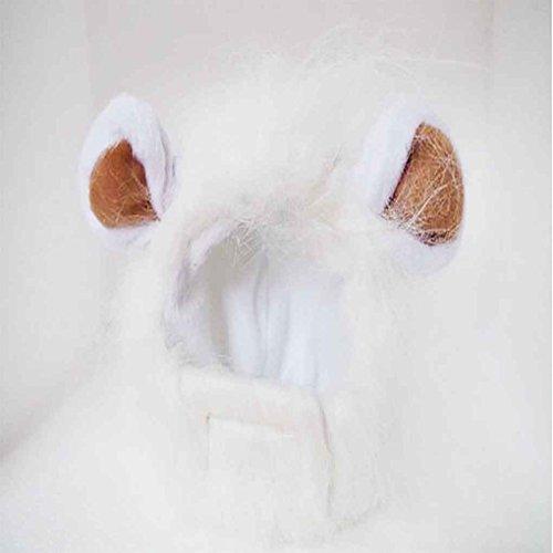 Lustige Weihnachtskostüm - Sunlera Netter Lustiger Löwe Mähne Wig Cap Hut mit Ohren für Halloween-Haustier-Katze-Weihnachtskostüm-Kleidung
