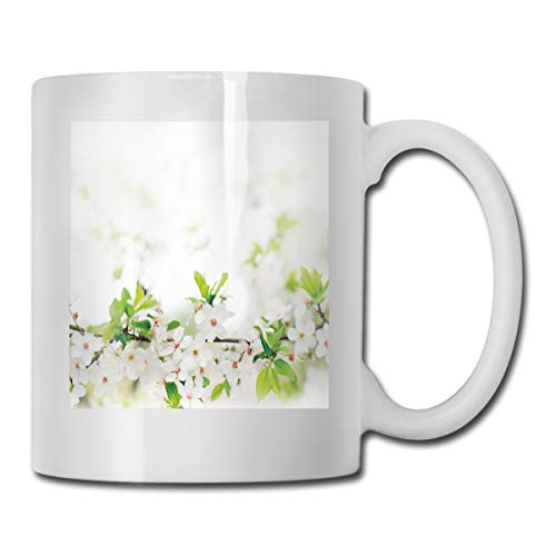 Jolly2T Funny Ceramic Novelty Coffee Mug 11oz,White Springtime Blossoms On Tree Branch Freshness Garden Growth Seasonal Nature,Unisex Who Tea Mugs Coffee Cups,Suitable for Office and Home Blossom Demitasse Cup