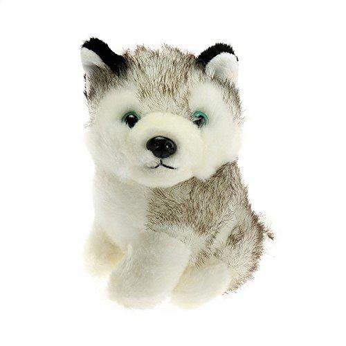 Preisvergleich Produktbild Gold Schmetterling @ Plüsch Material Simulation Husky Spielzeug PP Baumwolle gefüllte Hund Puppe (18CM hoch)