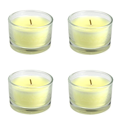 4x-large-jar-candle-vanilla-25hour-burn-scented-candles-glass-jar-wax-filled-32oz-flower-scent-vanil