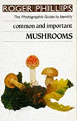 Mushrooms: The Photographic Guide to Identify Common & Important Mushrooms (The photographic guide to identity) by Roger Phillips (1986-12-30)
