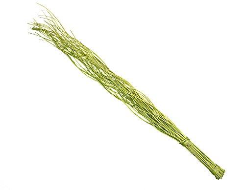 Steingaesser 12078 03 6700 - Rami di salice ritorto, fascio da 50, 80 cm, colore: Verde (kiwi) - Rod Del Fascio