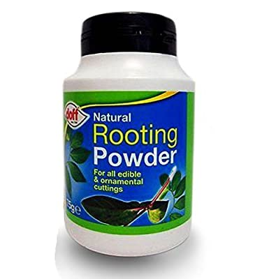 Doff 75g Natural Hormone Rooting Powder : everything £5 (or less!)