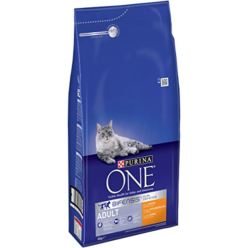 purina-one-bifensis-adult-dry-cat-food-chicken-and-whole-grains-6kg