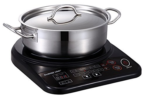 gowise-usa-gw22616-portable-induction-cooktop-with-stainless-steel-pan-by-gowise-usa