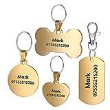 BKDZ Premium gravierte personalisierte Edelstahl Hund Katze Haustier ID Tags Knochen rundes Herz Quadrat Tag Kragen (S, Goldener Kreis)