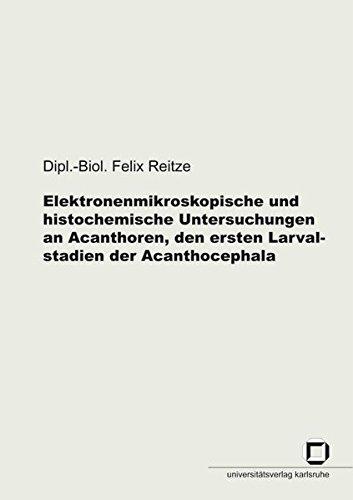 Elektronenmikroskopische und histochemische Untersuchungen an Acanthoren, den ersten Larvalstadien der Acanthocephala