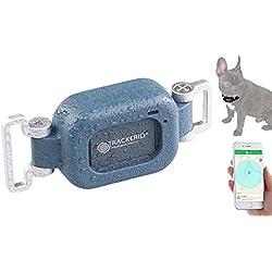 TrackerID GPS Katze: GPS- & GSM-Live-Tracker für Hunde und Haustiere, mit Halterung, IP67 (GPS Tracker für Tiere)