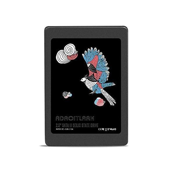 ADROITLARK-SSD-Series