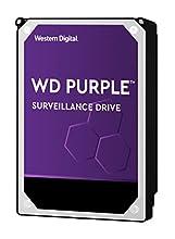 """HDD WESTERN DIGITAL 1TB PURPLE Videosorveglianza 1 TB 3.5"""" SATA"""