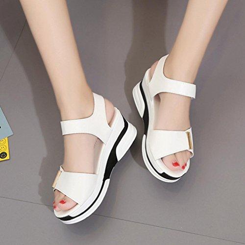 Transer® Damen Keilabsatz Flach Sandalen Schwarz Blau Weiß Mid-heeled Klettverschluss PU-Leder+Polyurethan Outdoor Sandalen Weiß