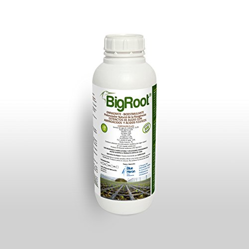 bigroot®, enraizante écologique pour, bioestimulante et exhausteur naturel de la rizogenesis. aminoacidos et vitamines. Spécial amélioration la qualité & Produccion, Canabis plantes, fruits et fleurs. Spécial Raiz
