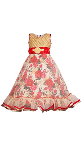 My Lil Princess Baby Girls Birthday Party wear Frock Dress_Golden Red Roses_Net...
