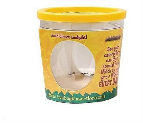 insect-lore-garden-pavilion-refill-kit-01020