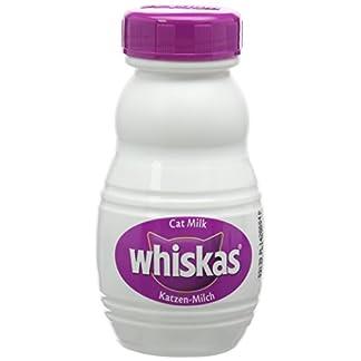Whiskas Cat Milk, 3 x 200ml 17