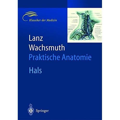 PDF] Lanz / Wachsmuth Praktische Anatomie: Praktische Anatomie: Hals ...