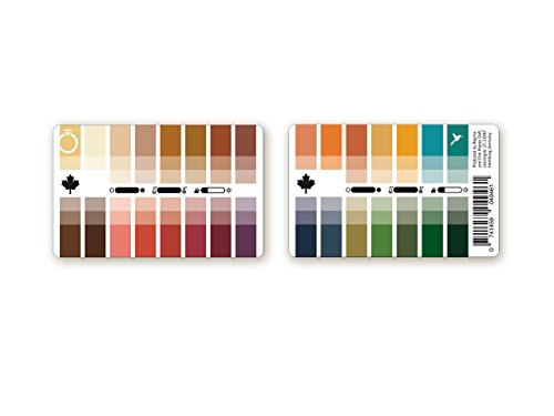 Farbpass Herbst (True / Pure Autumn) als Plastikkarte mit 30 typgerechten Farben zur Farbanalyse, Farbberatung, Stilberatung (Herbst Farben)
