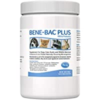 Bene-Bac Plus Prebiotic Pet Powder, 1-Pound by
