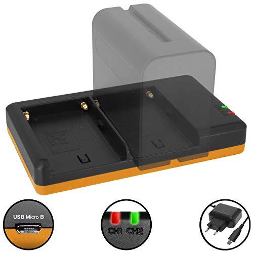 Dual-Ladegerät (Netz, USB) für NP-F550, F750, F970. | für Sony Camcorder | viele LED Videoleuchten. - Siehe Kompatibilitätsliste - inkl. 2A Netzteil (2 Akkus gleichzeitig ladbar)