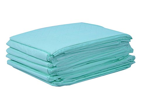 HygiPad Disposable UnderPad - Pack of 12