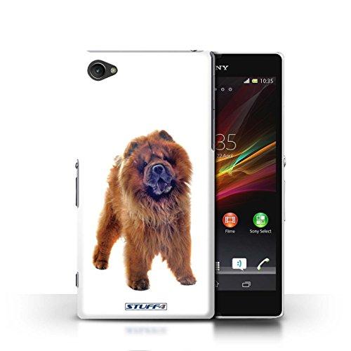 Kobalt® Imprimé Etui / Coque pour Sony Xperia Z1 Compact / Bouledogue conception / Série Chiens Chow Chow