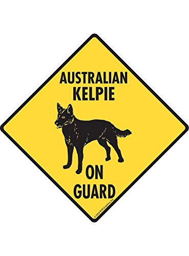 HSSS Warning! Australian Kelpie On Guard Aluminum Dog Sign – 12×12 inch
