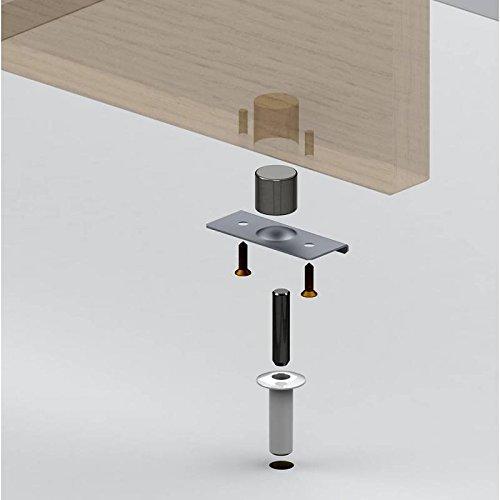 Flush Stahl Tür (Fantom FDS Stop Made mit Nickel vergoldet Pin geeignet für Single und Double Leaf Türen, klar)