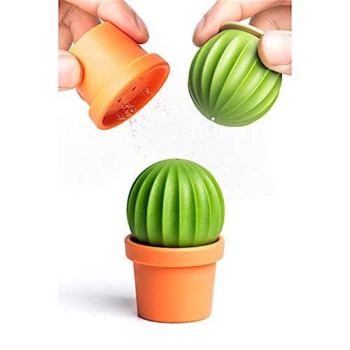 Salz und Pfeffer Kaktus - Kaktus Salz