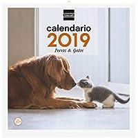 Finocam 780303019 - Calendario de pared 2019